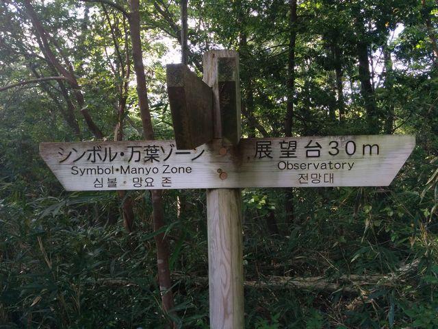 春日山公園展望台までの道3